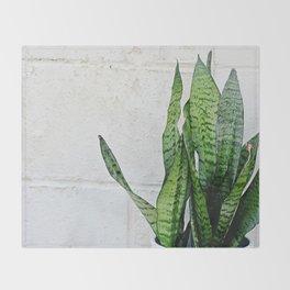 snake plant Throw Blanket