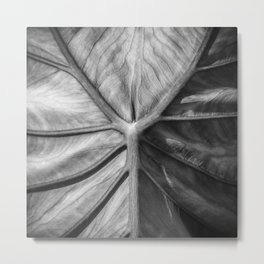 Leafscapes II Metal Print