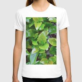Heart Vibe T-shirt