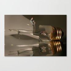 Reflecting on a Bad Idea Canvas Print
