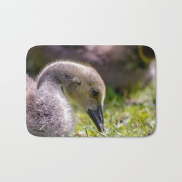 baby gosling (canada goose) Bath Mat