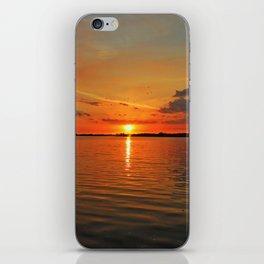 Windswept Charms iPhone Skin