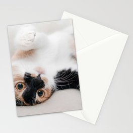 Little Cat Sweet Kitty Lovely Pet Stationery Cards