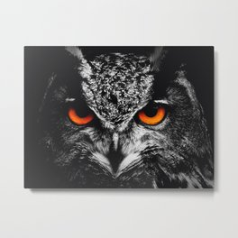 Owl Fire Eyes Metal Print