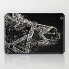 High Park Zoo Llama iPad Case