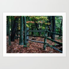 Forest Fence Art Print
