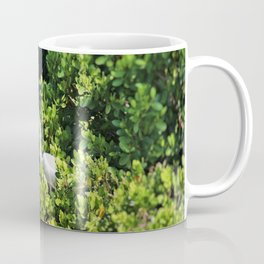 Presenting a Gift Coffee Mug