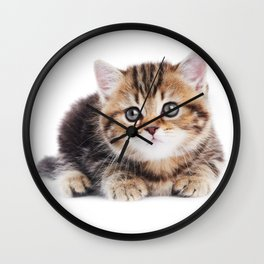 Lonely Kitten Wall Clock