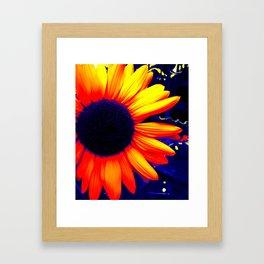Radiation Flower Framed Art Print