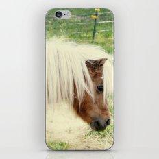 Pony iPhone & iPod Skin