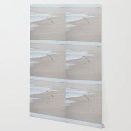 Terns Wallpaper