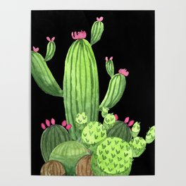 Flowering Cactus Bunch on Black Poster