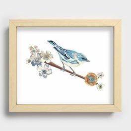 Cerulean Warbler Recessed Framed Print