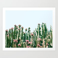 Blush Cactus #society6 #decor #buyart Art Print