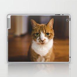 The Cat. Laptop & iPad Skin