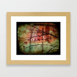 Thorns Framed Art Print