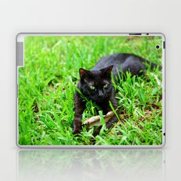 Green Eyes Laptop & iPad Skin