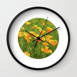 california poppy VI Wall Clock