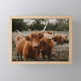 Brother Cows Framed Mini Art Print