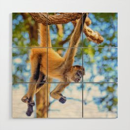 Just Hanging Around Wood Wall Art