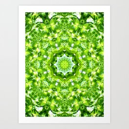 GREEN LEAVES MANDALA Art Print