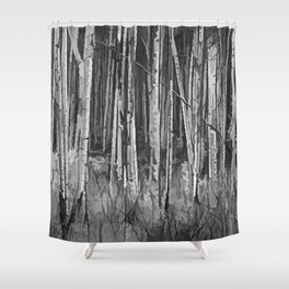 Colorado Autumn Wonder Panorama In Black And White by OLena Art Shower Curtain