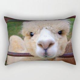 Alpaca Gaze Rectangular Pillow