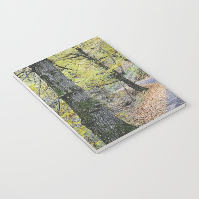 Into the autumn woods Notebook