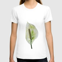 Peace Lily on White #1 #floral #decor #art #society6 T-shirt