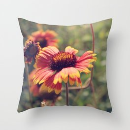 Gaillardia flower Throw Pillow