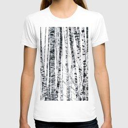 Birch Trees In Winter T-shirt