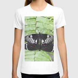 Mating Swallowtail Butterfly T-shirt