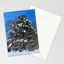 Tenacious Winter Stationery Cards