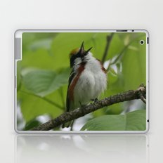 Chestnut-sided Warbler Laptop & iPad Skin