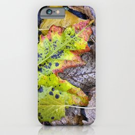 Rainy Leaves. Forest Dreams iPhone Case