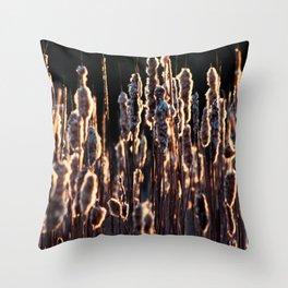 grass in golden light Throw Pillow