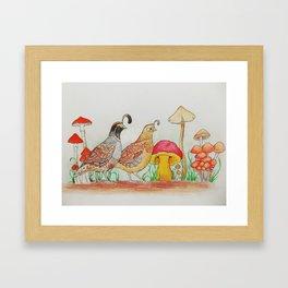 Royal Boletus Framed Art Print
