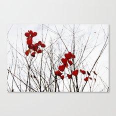 Love Leaves Canvas Print