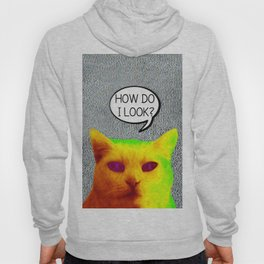 TV Cat Hoody
