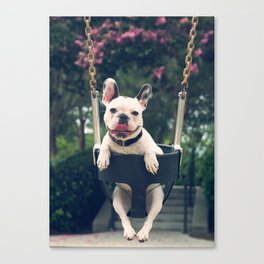 Frenchie Swings Canvas Print