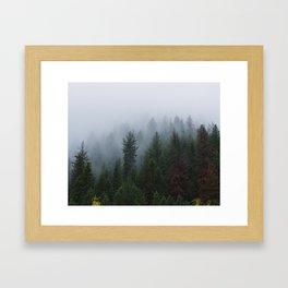 Into the Deep, Foggy, Forest Framed Art Print