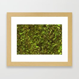 Abalone Shell | Paua Shell | Yellow Tint Framed Art Print