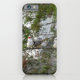 And Then Mama Said iPhone Case