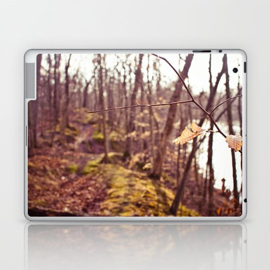 A Walk in the Woods Laptop & iPad Skin