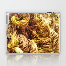 Tree Fur Laptop & iPad Skin