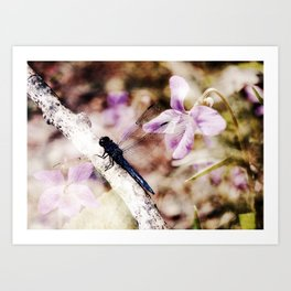 Dragonfly :: Among the Violets Art Print