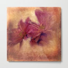 morning dew and grungy texture -2- Metal Print