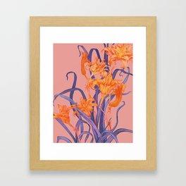 Daylily Framed Art Print