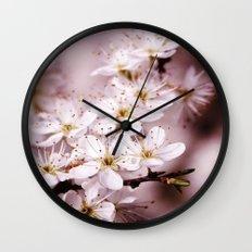 Tender spring Wall Clock
