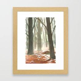 Briars Woods, Ontario Dec 2015 Framed Art Print